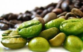 Café Verde Para Quemar La Grasa Abdominal